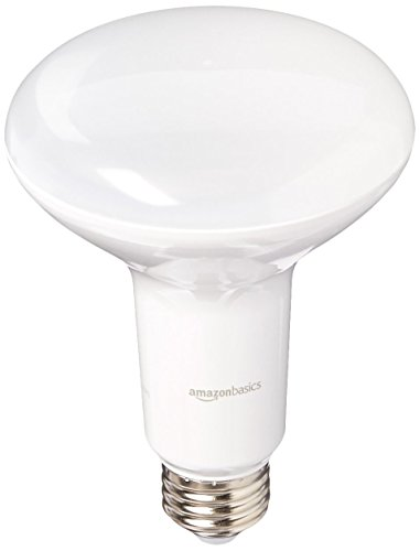 Daylight Led Bulbs: AmazonBasics 65 Watt Equivalent, Daylight, Dimmable, BR30